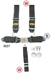 5-pt Belt with Twin Harness