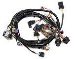 GM LS1 EFI Main Wiring Harness