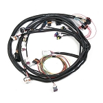 GM LS2 EFI Main Wiring Harness